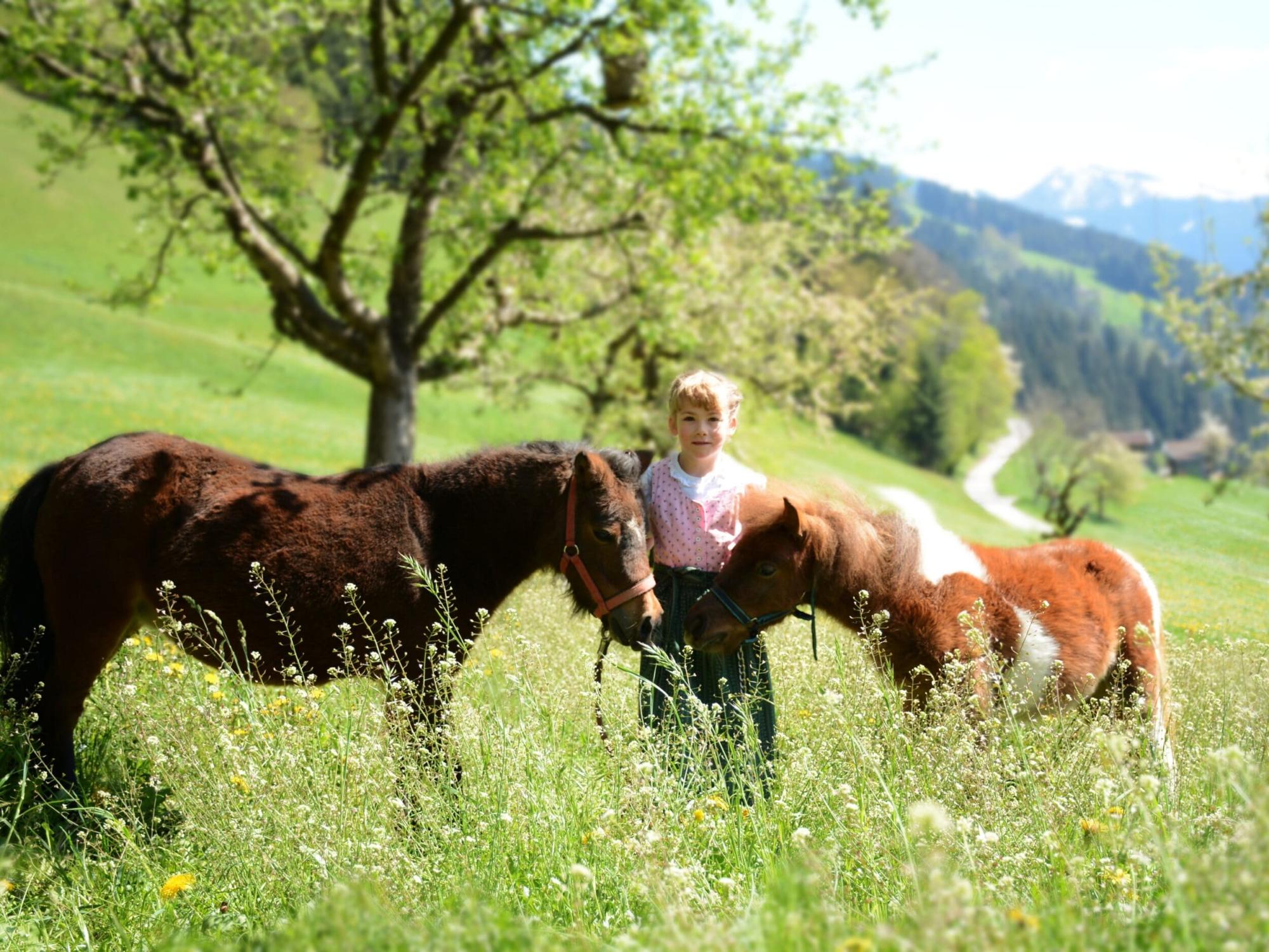 Familie Larcher Binsalm Karwendelgebirge