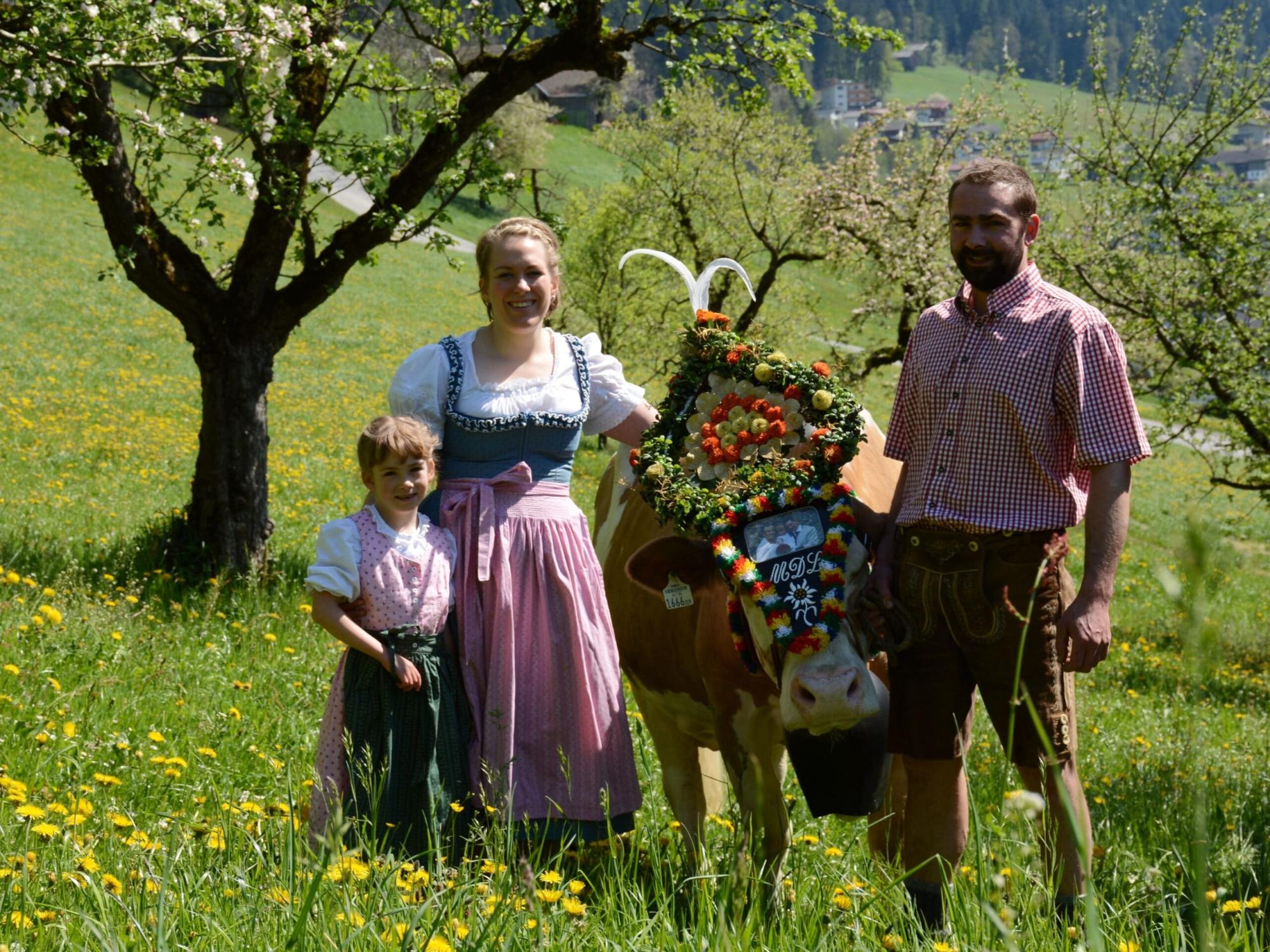 Binsalm, Karwendel, Almabtrieb, Wandern