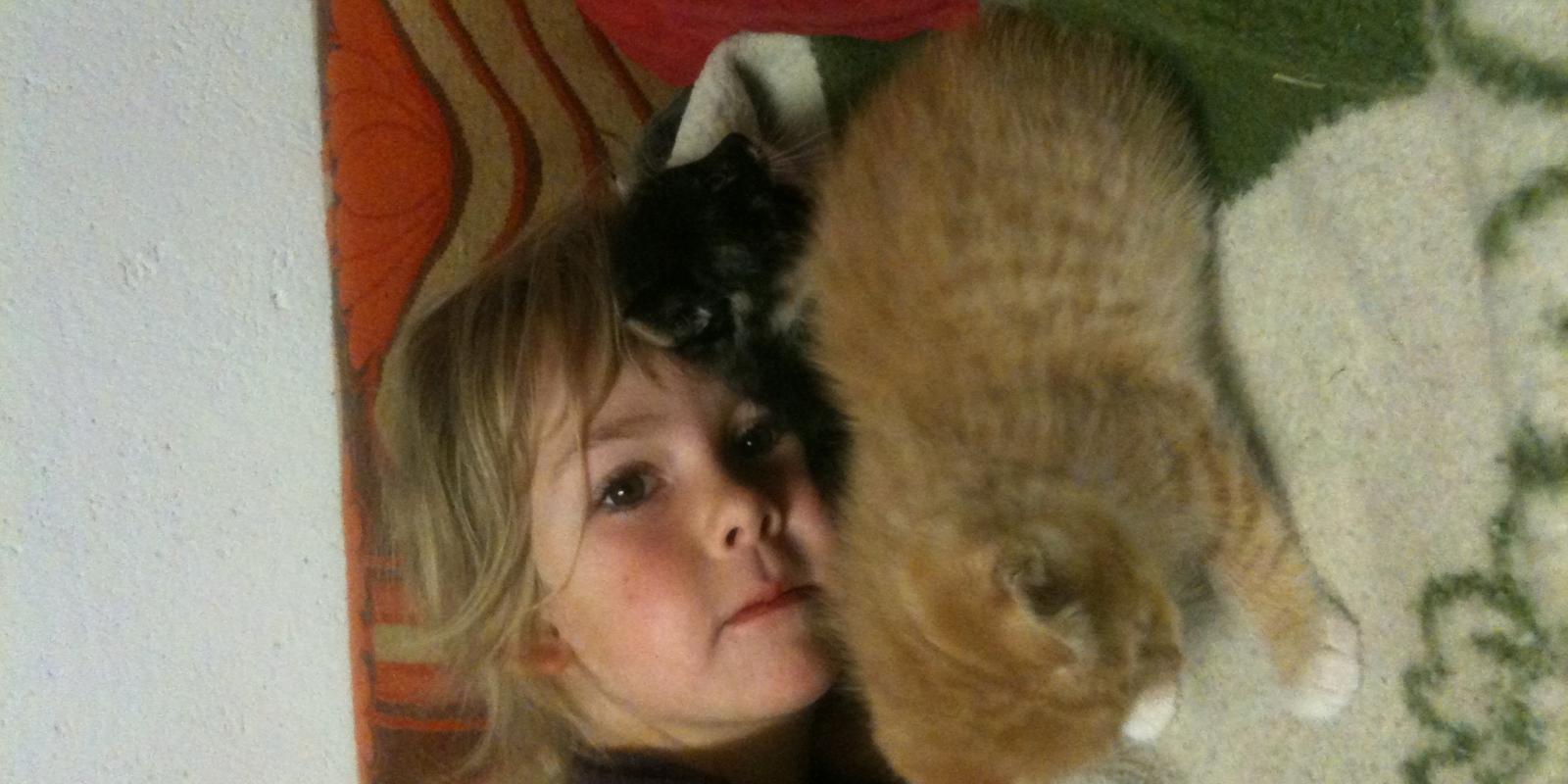 Katze auf der Binsalm mit Magdalena